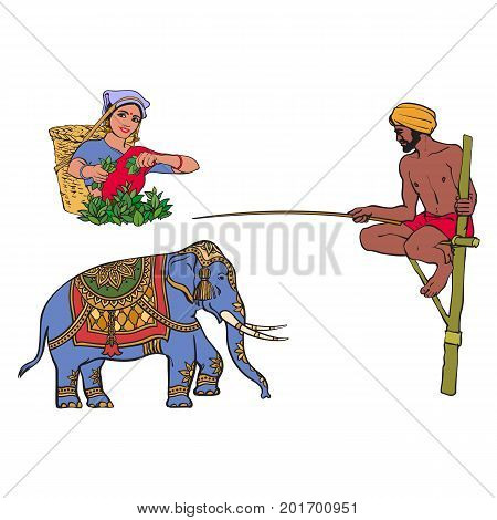vector sketch cartoon local indian man in handscarf pagri or turban fishing at wooden stilt pillar, woman picking tea leaves, decorated elephant. Traditionally dressed characters, hand drawn symbols
