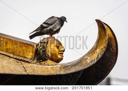 Pigeon On The Stupa Of The Swayambunath Temple, Kathmandu, Nepal