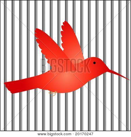 bird in cage / bars vector