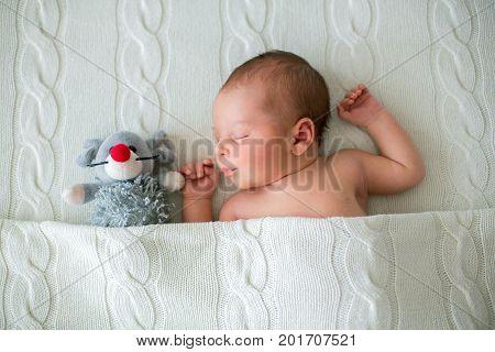 Sleeping Newborn Baby Boy, Hugging Little Knitted Toy