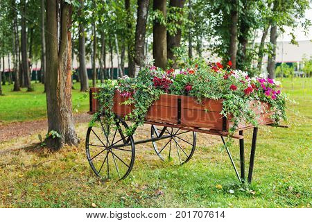 Flowerbed shaped as a wooden cart. Garden decoration with Petunia flowers.