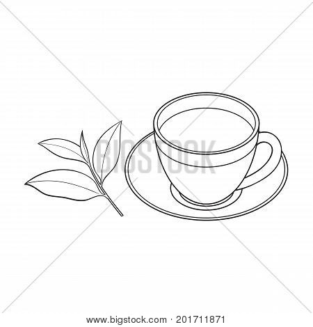 Transparent glass cup, saucer and fresh tea leaf, sketch vector illustration isolated on white background. Hand drawn glass mug and saucer set with tea leaf