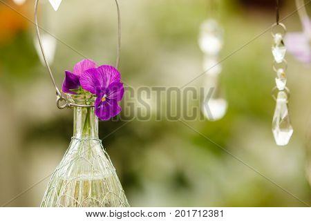 Hanging Flowers In Glass Flowerpot, Floristry Decoration