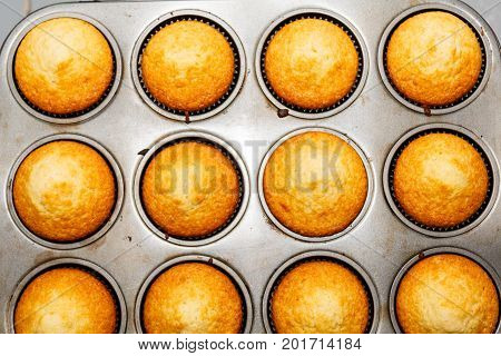 Muffin Pan Tray Full Of Freshly Baked Muffins Cupcakes