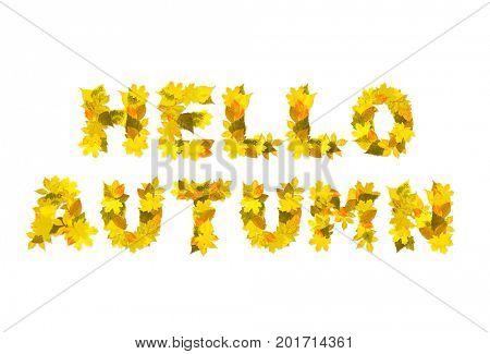 Hello autumn. A phrase from the letters of autumn leaves. Isolated on white background