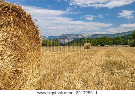 French countryside with agricultural hay fields and rolled hay bales. In the background the mountains of the Alps and the provence