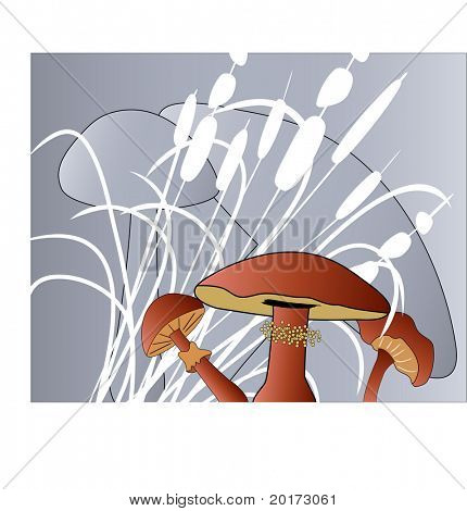 mushrooms with grasses
