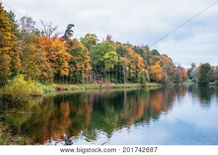 Beautiful autumn forest landscape near the lake and idyllic trees reflection. Yellow, orange and golden foliage of a woods trees. Outdoor park landscape at a fall, orange autumn tranquility