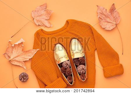 Autumn Arrives. Fashion Lady Clothes Set. Trendy Knit Jumper. Fashion Stylish Glamour Shoes. Fall Leaves. Vintage. Vanilla Pastel colors.