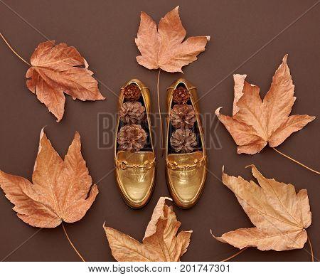 Autumn Arrives. Fall Fashion Design. Fall Leaves Background. Trendy fashion Stylish Glamour Shoes. Vintage