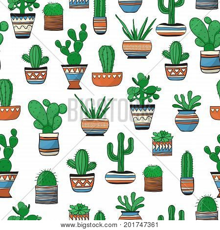 Seamless colored pattern with succulents . Cute vector background