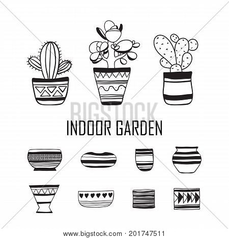 Set of plants and empty flower pots . Vector doodle.