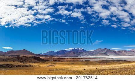 View on Altiplano Lagoon Salar de Talar in Chile by San Pedro de Atacama