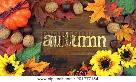 Autumn Fall Overhead