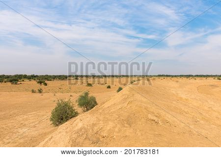 Wide angle picture of Thar Desert with local vegetation located close to Jaisalmer the Golden City in India.