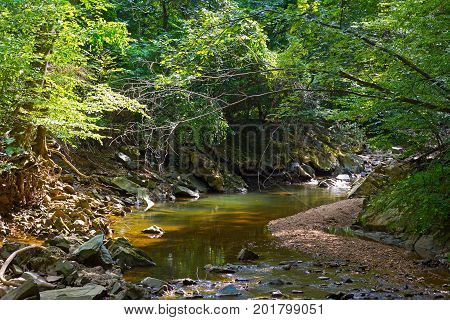 A small creek in the summer with reflections. Trees near the creek with branches hanging over its waters.