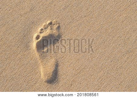 Human Footprint On Sand With Amazing Nature Sun Lightning. Can See Footprint Up And Down In One Phot
