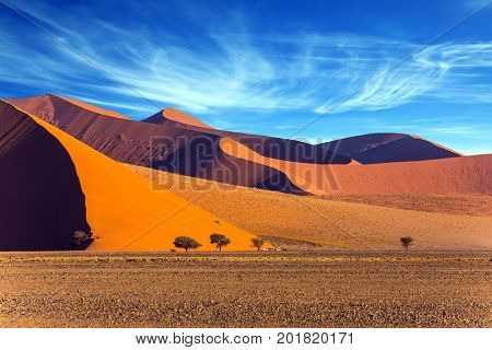 The Namib-Naukluft park at sunset. Sharp border of light and shadow over the crest of the dune. The concept of extreme and exotic tourism