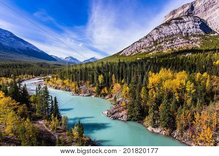 Abraham Lake is the most beautiful lake in the Rockies. Dense forests cover the lake shores. Warm sunny day in autumn. The concept of ecological and active tourism