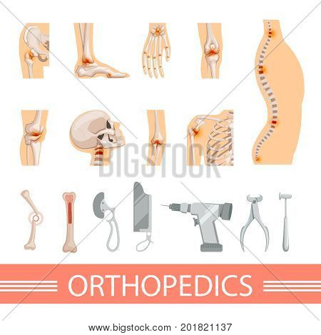 Orthopedic icons set. Human skeleton, bones and different medical accessories. Human orthopedic icon spine and hand, ankle and knee. Vector illustration
