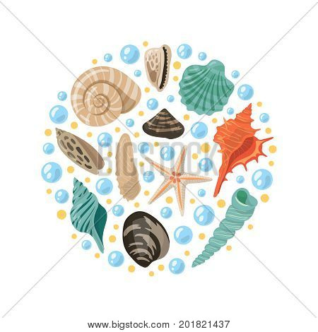 Different tropical shells in circle shape. Vector aquatic concept illustrations. Tropical shell marine underwater, conch frame spiral