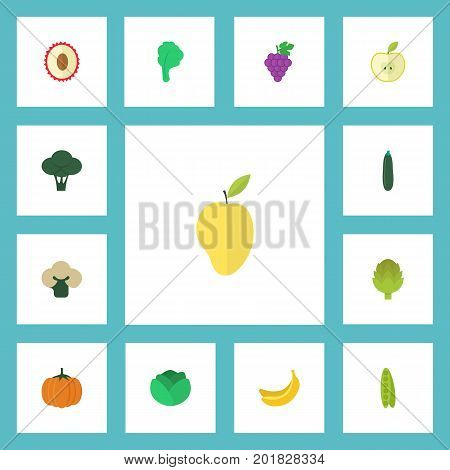 Flat Icons Jungle Fruit, Bean, Cauliflower And Other Vector Elements