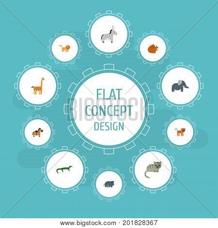 Flat Icons Camelopard, Chipmunk, Kitty And Other Vector Elements