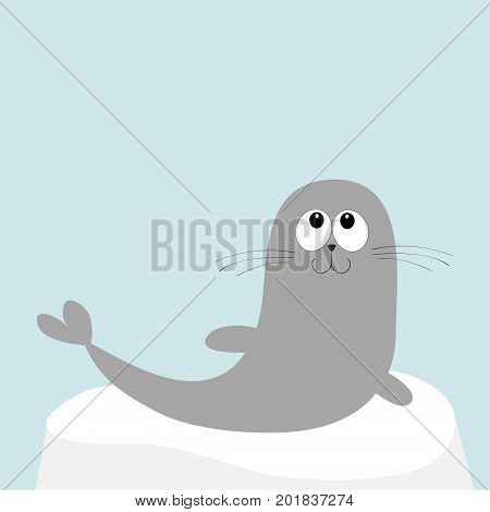 Sea lion. Harp seal pup lying on iceberg ice. Cute cartoon character. Happy baby animal collection. Sea ocean water. Blue background. Flat design Vector illustration