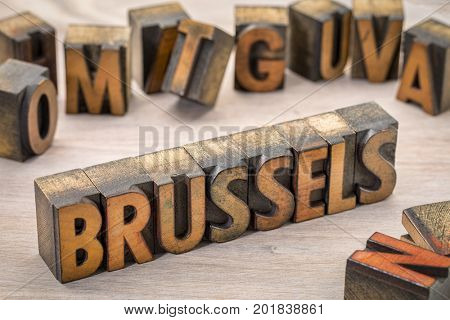 Brussels word abstract in vintage letterpress wood type printing blocks