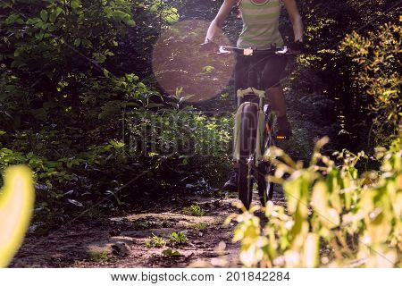 Cyclist on a bicycle in a green forest