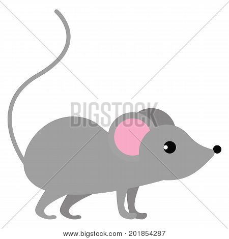 Mouse wild animal flat icon, vector sign, colorful pictogram isolated on white. Symbol, logo illustration. Flat style design