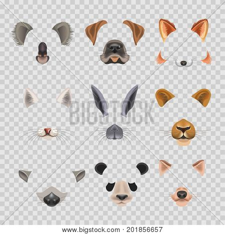 Animal faces template for video chat effect or selfie photo filter. Vector flat isolated muzzle nose and ear of dog, cat or fox and rabbit, raccoon or koala, panda and lion face icons set