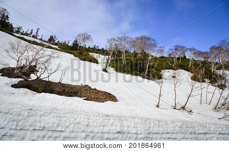 Landscape Of Mount Iwate In Tohoku, Japan