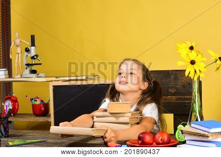 Schoolgirl With Glad Face Gives Book. Homework, Back To School