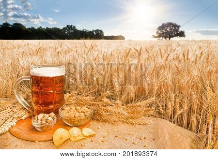 Beer and snacks on the background wheat field. A big glass of beer on the table against wheat field during summer sunset. Light beer in glass and snacks with a summer landscape on the background.