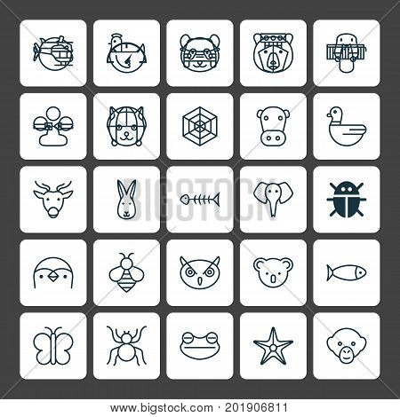 Zoology Icons Set. Collection Of Diver, Claw Print, Cobweb And Other Elements