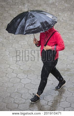 Rainy Weather Umbrella