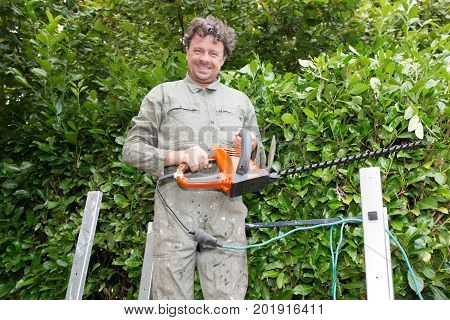 Man Suburban Backyard Trimming Hedges With Electric Hedge Trimmer Tool