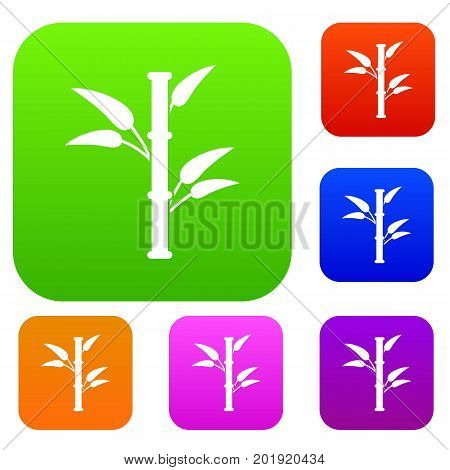 Bamboo set icon in different colors isolated vector illustration. Premium collection