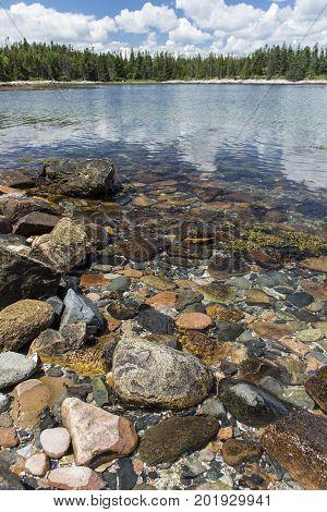 Acadia Shoreline - Trees In Background