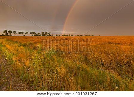 Beautiful Rainbow Over Fields
