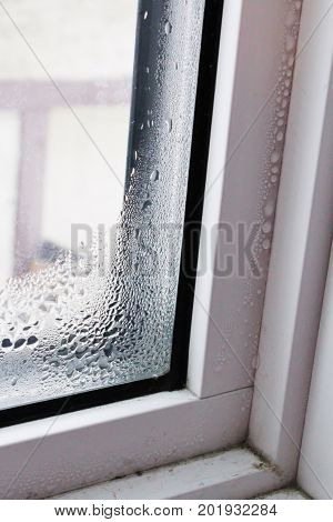 Water beading on window frame in winter