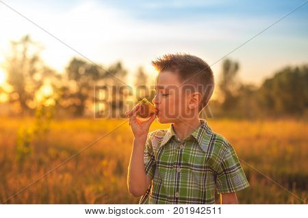 Portrait of young boy eating peach. Happy child in sun summer day. Kid with fruit in nature background at sunset.