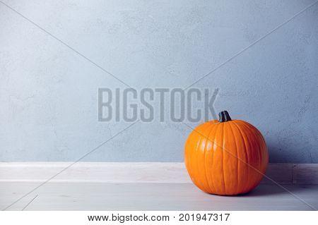 Orange Autumn Pumpkin On Floor