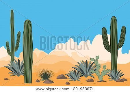 Scenery of the arid desert. Landscape with Saguaro cacti and blue agaves. View of mountains, clear blue sky in the background. Vector illustration