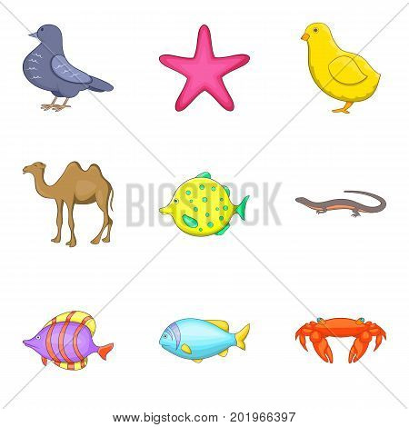 Pisces icons set. Cartoon set of 9 pisces vector icons for web isolated on white background