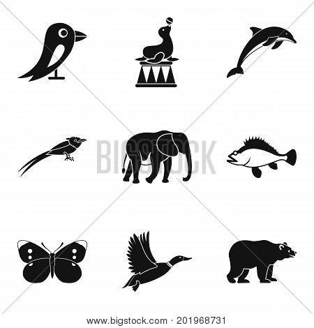 Training of animal icons set. Simple set of 9 training of animal vector icons for web isolated on white background