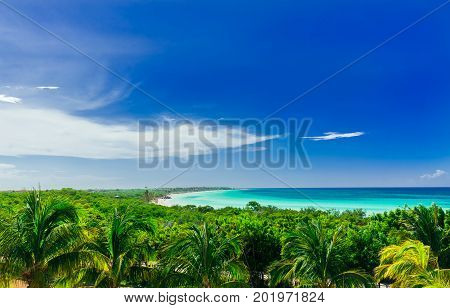pretty amazing view on tropical palm trees garden with tranquil turquoise inviting ocean and beach against blue sky background on sunny day