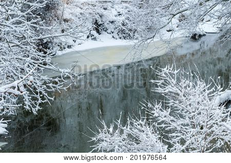 An icy creek with snow-covered branches in winter