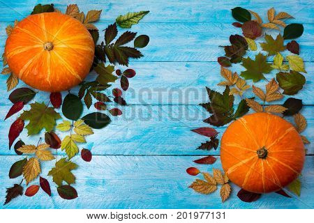 Thanksgiving greeting with pumpkin and autumn leaves on blue wood. Fall background with seasonal vegetables and leaves